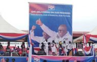 NPP delegates' conference in pictures