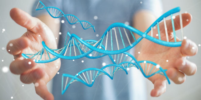 Ambitious Genetics Project Touted As Scientific 'Noah's Ark'