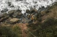 Woman Survives 7 Days After Suv Plunges Off Cliff In Big Sur