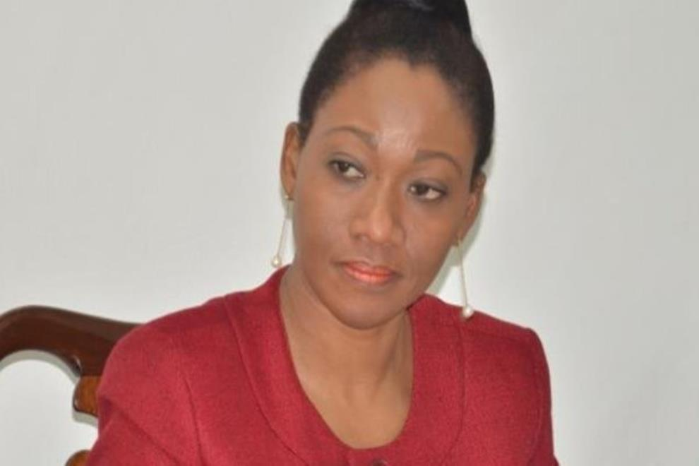 Consultation For EC Chair Nomination Should Have Been Exhaustive – Gov't Experts