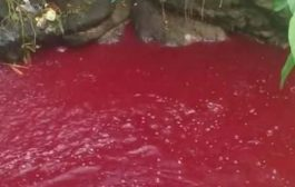 Plague of Blood Red Rivers Suddenly Appears in Multiple Locations