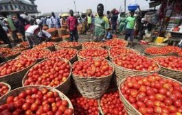 Ghana loses $10m following ban on five vegetable exports