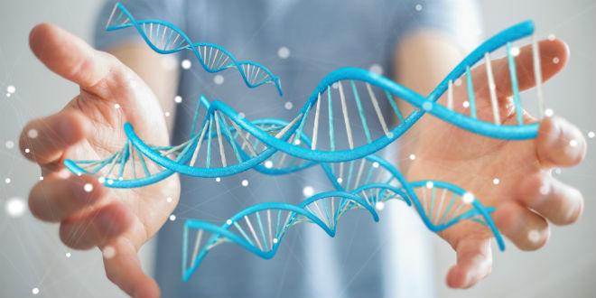 Ambitious Genetics Project Touted As Scientific 'Noah's Ark'