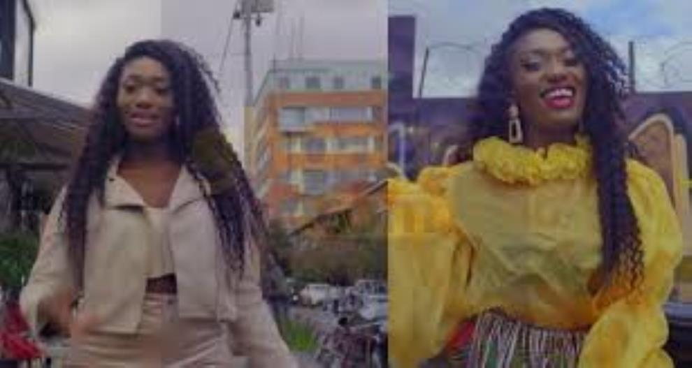 "Late Ebony's Fans Retaliated to Wendy Shay's ""Uber Driver"" Music Video"