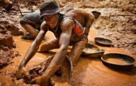Grant Us Refugee Status--Small Scale Mining Group Appeals