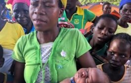 Mozambique Woman Gives Birth Up A Tree