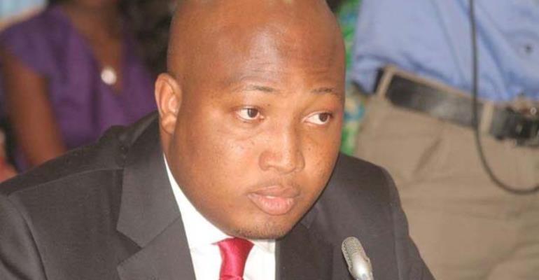 Ablakwa Makes Case For Artificial Insemination Regulation