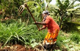 Stepping Up Climate Action for a Resilient Africa